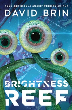DAVID BRIN's Brightness Reef